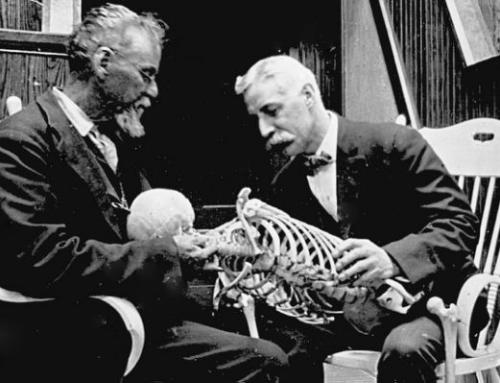 Histoire de l'ostéopathie