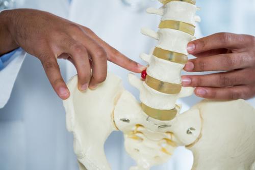 Pilates pour la mobilité du dos