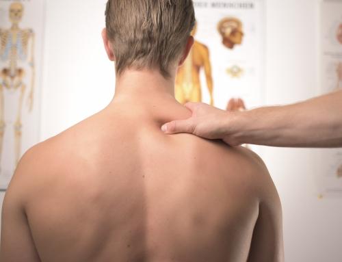 3. Placement des épaules et du thorax